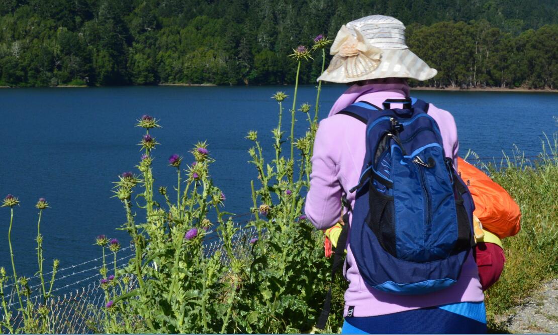 sawyer camp trail3