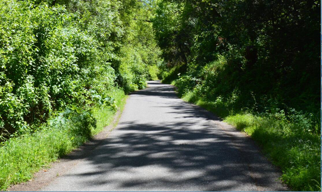 sawyer camp trail33