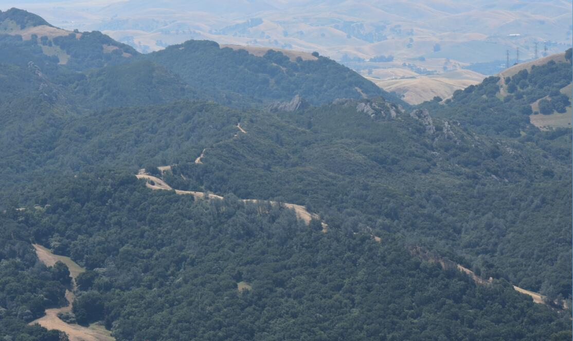 Mt Diablo Summit Trail19