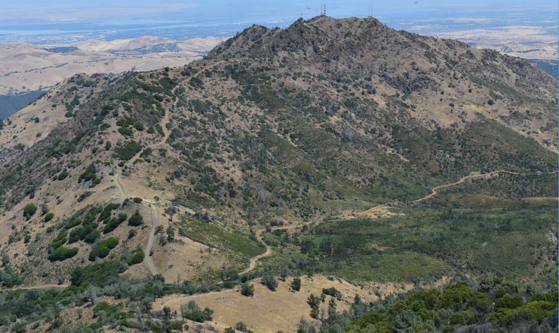 Mt Diablo Summit Trail48