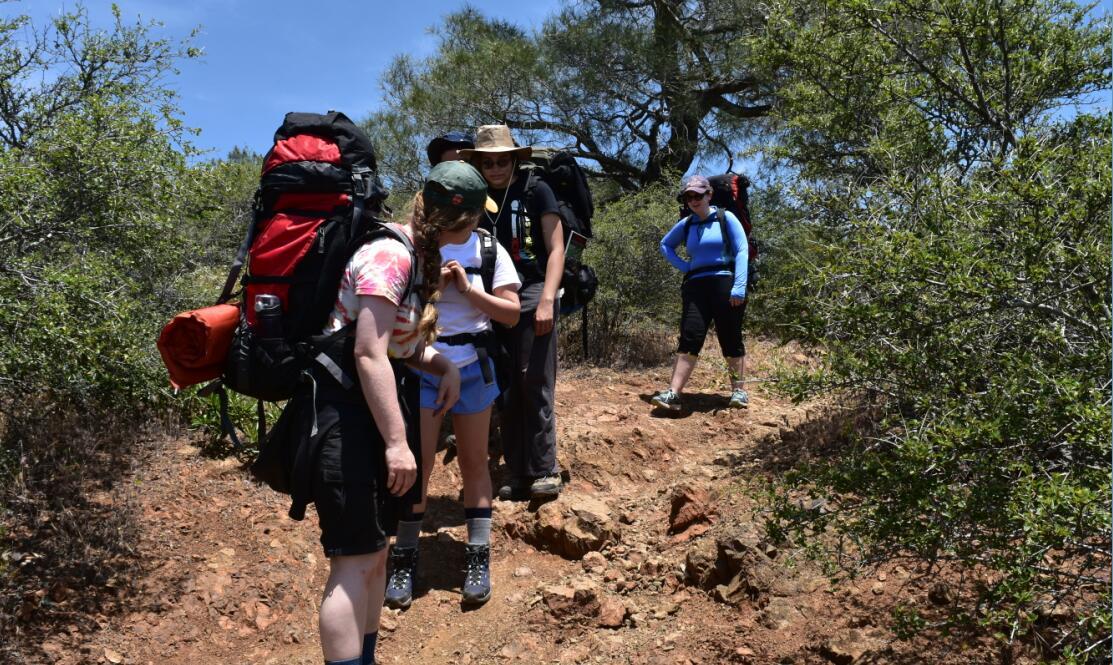 Mt Diablo Summit Trail56
