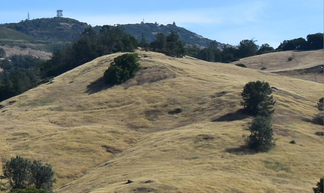 Mt Diablo Summit Trail6
