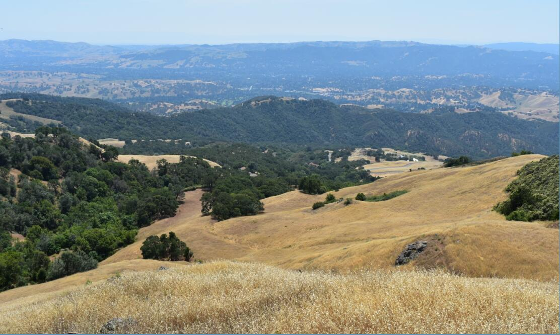 Mt Diablo Summit Trail65