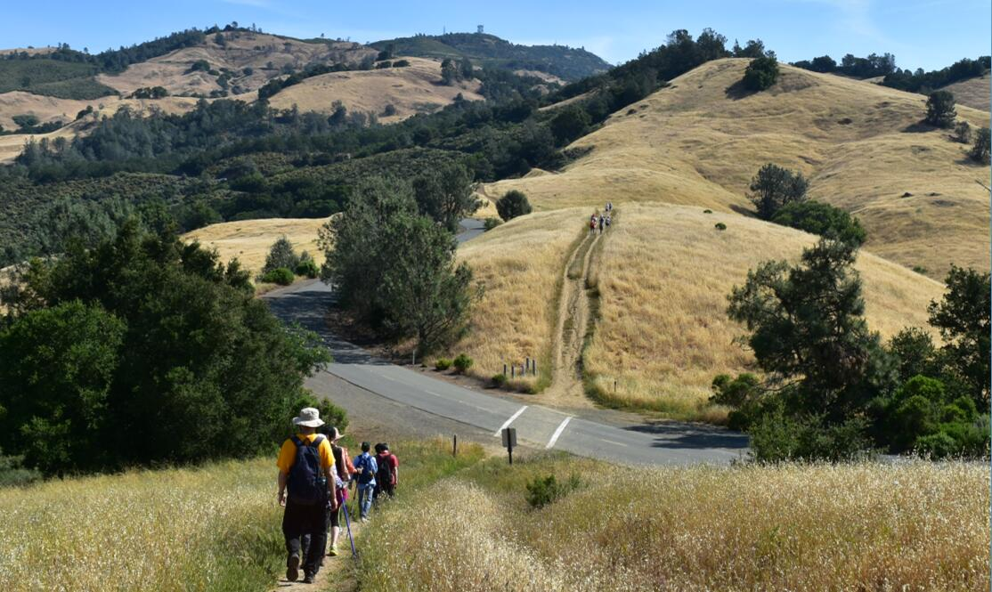 Mt Diablo Summit Trail7