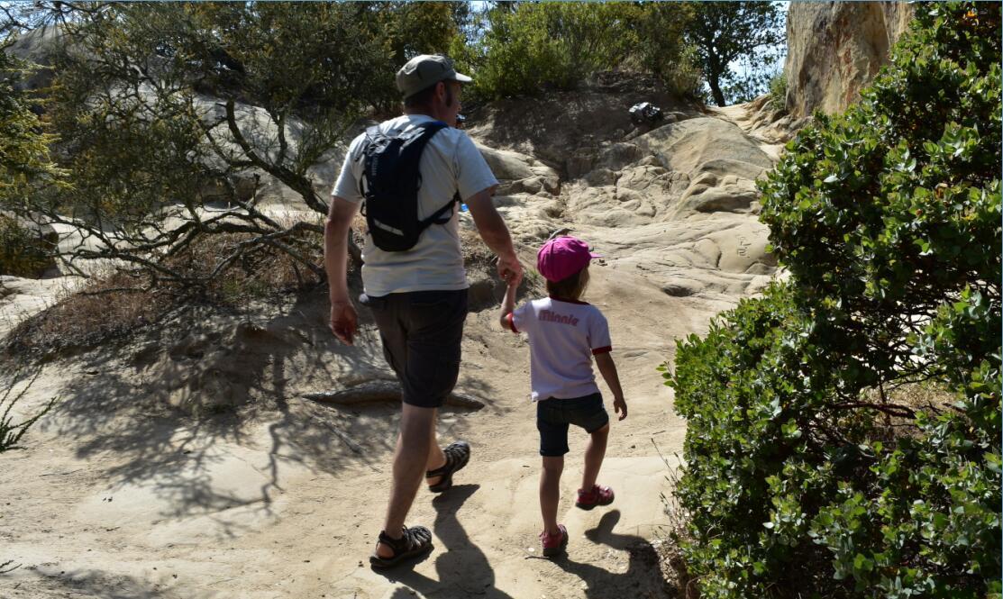 Mt Diablo Summit Trail78