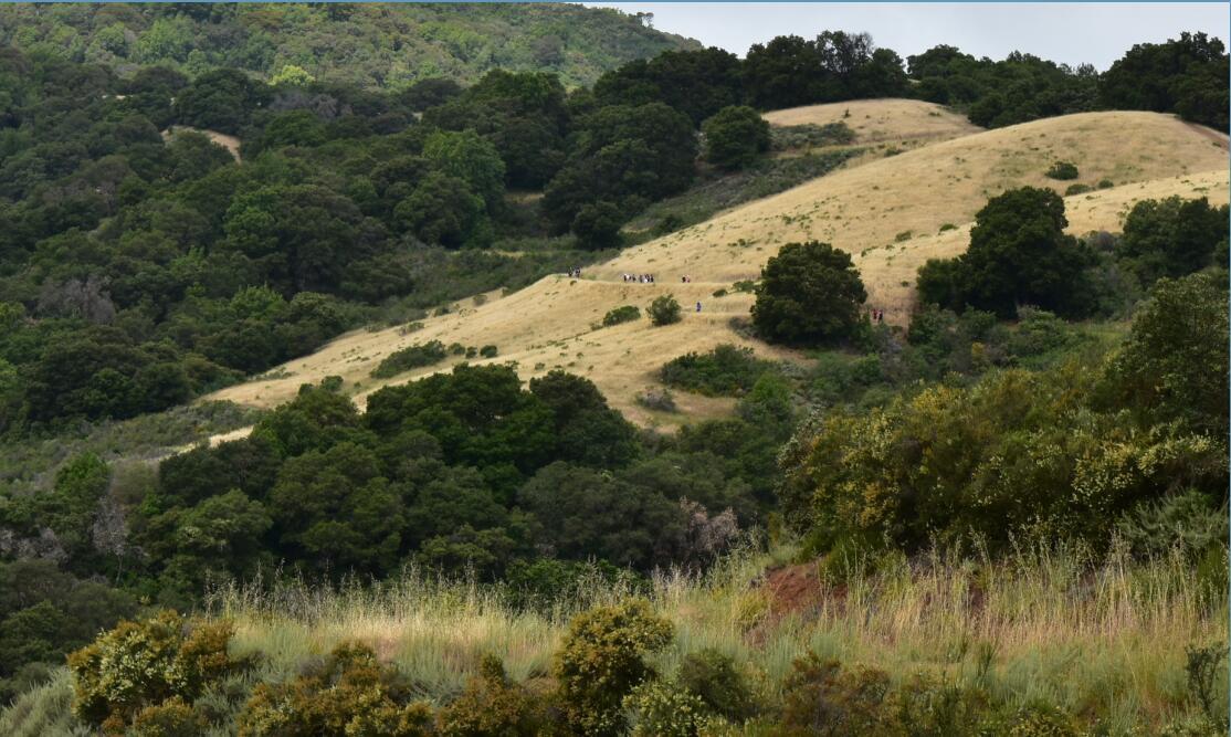 Rancho San Antonio County Park16