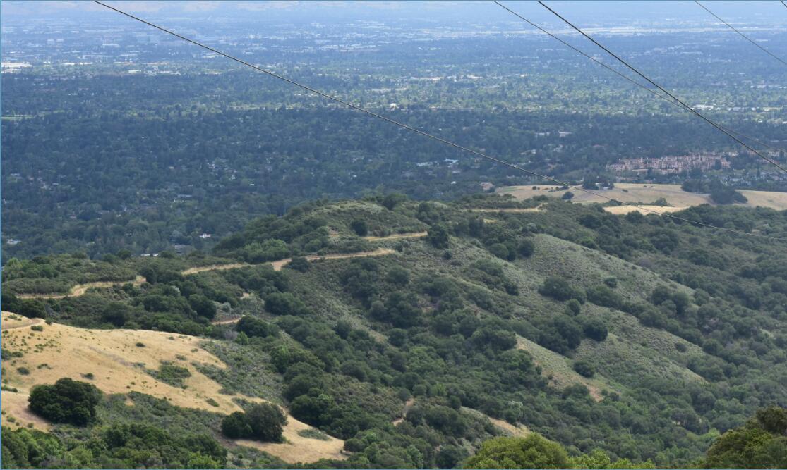 Rancho San Antonio County Park45