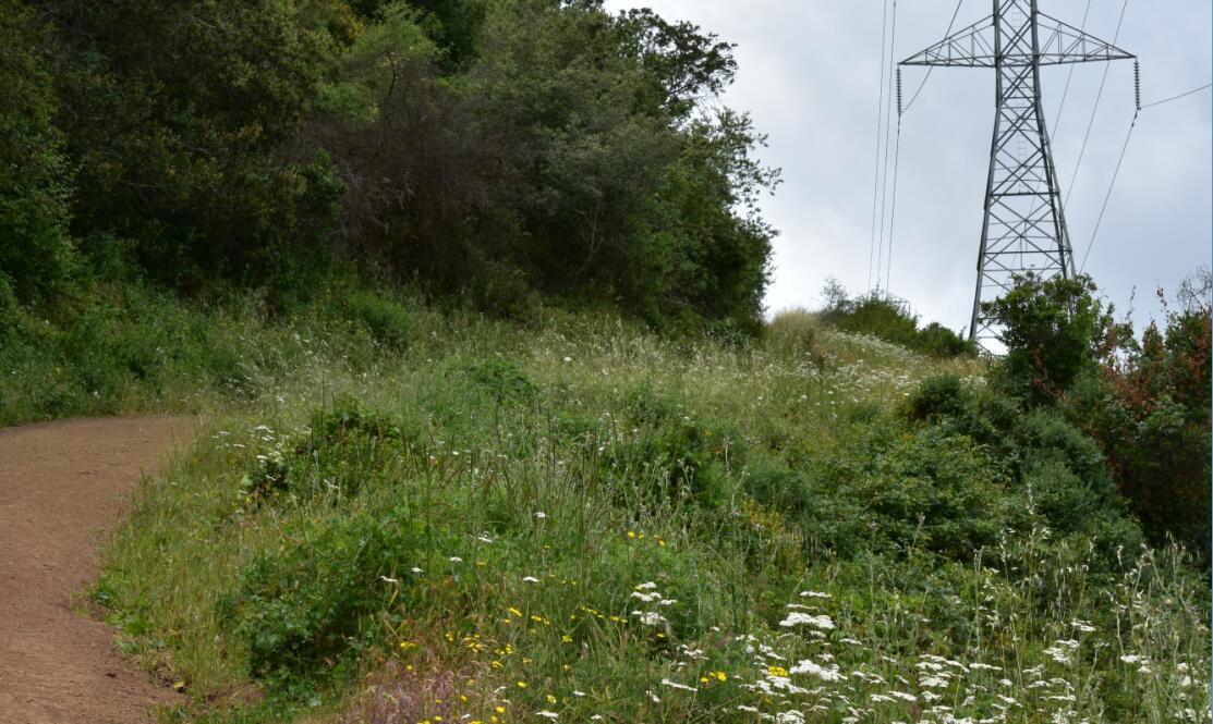 Rancho San Antonio County Park68