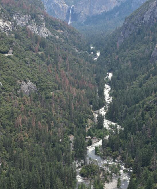 yosemite national park2_1