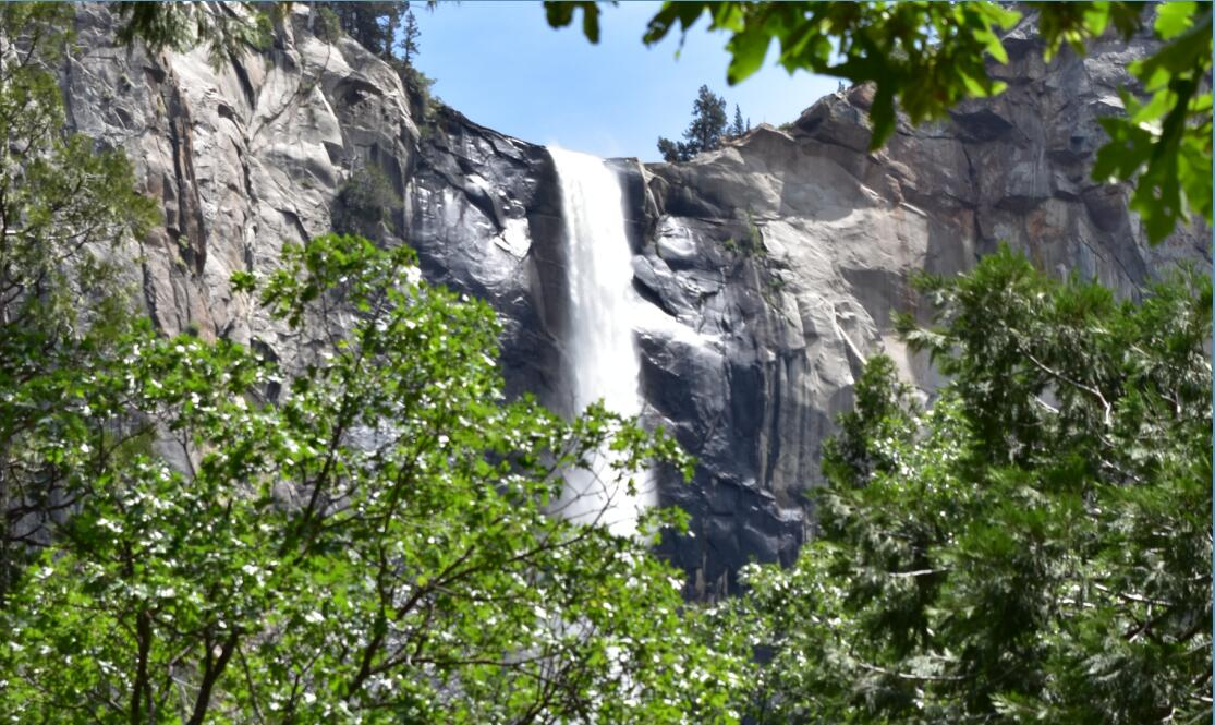 yosemite national park4_1