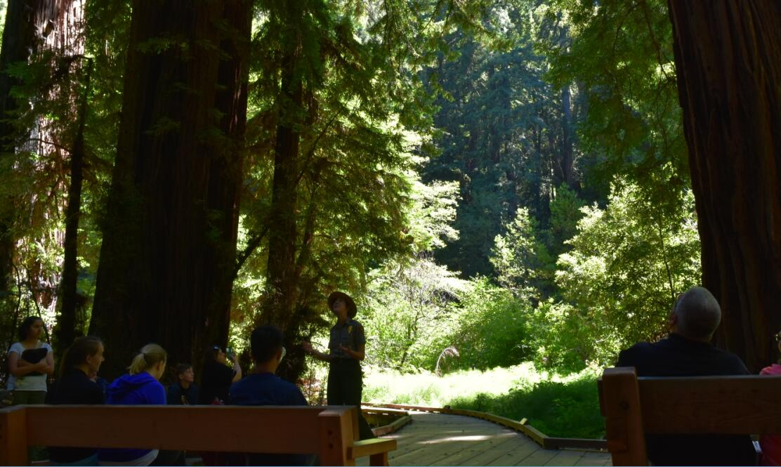 muir woods national monument47_0