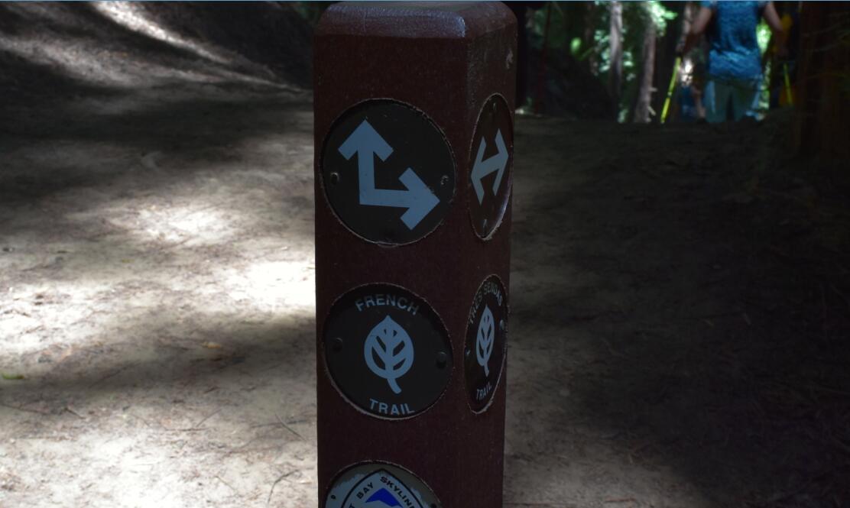 redwood regional park22