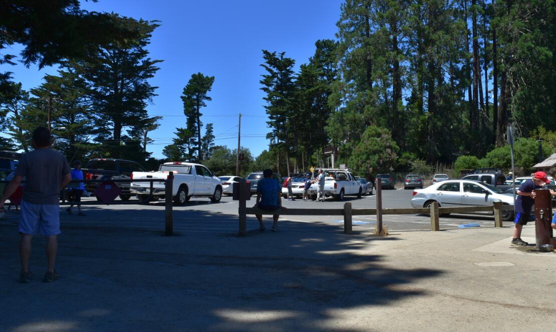 redwood regional park32