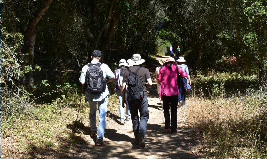 redwood regional park4