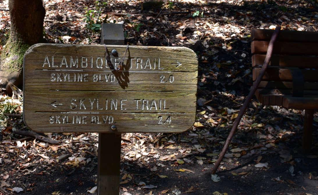 wunderlich county park18