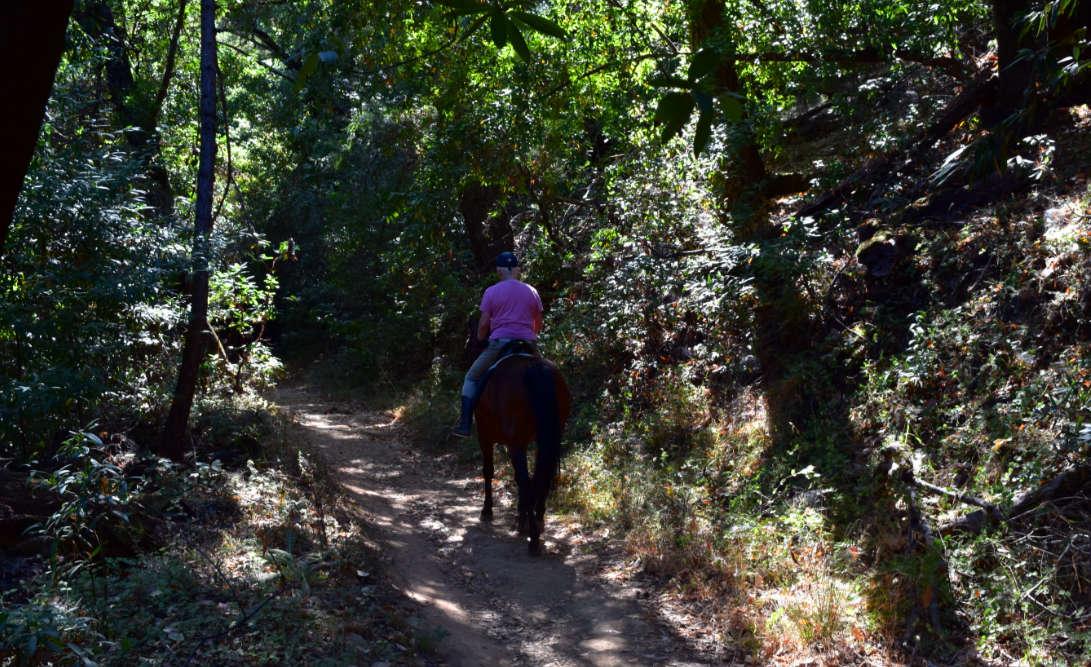 wunderlich county park42