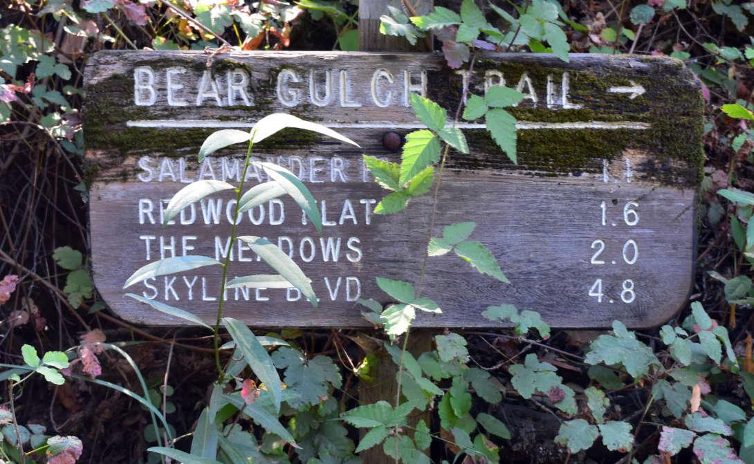 wunderlich county park43