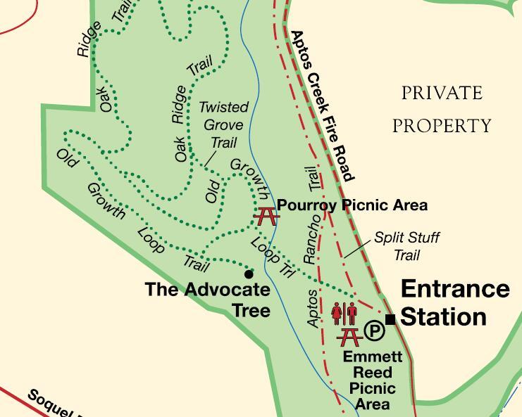 the-forest-of-nisene-marks-state-park_entrance
