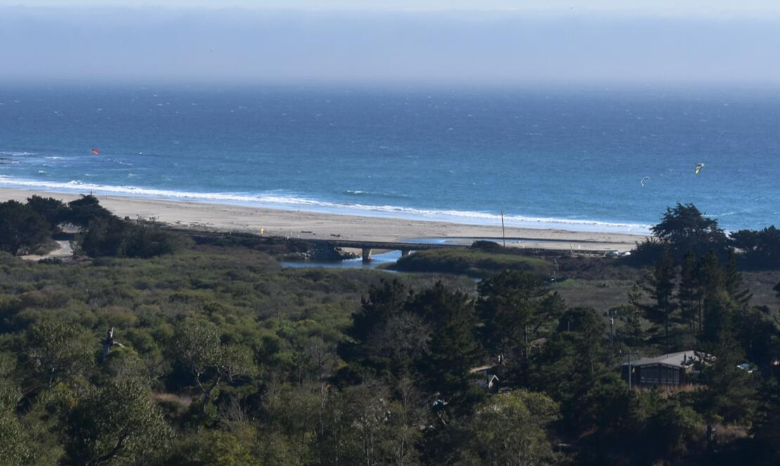 big-basin-stake-park-waddell-beach34