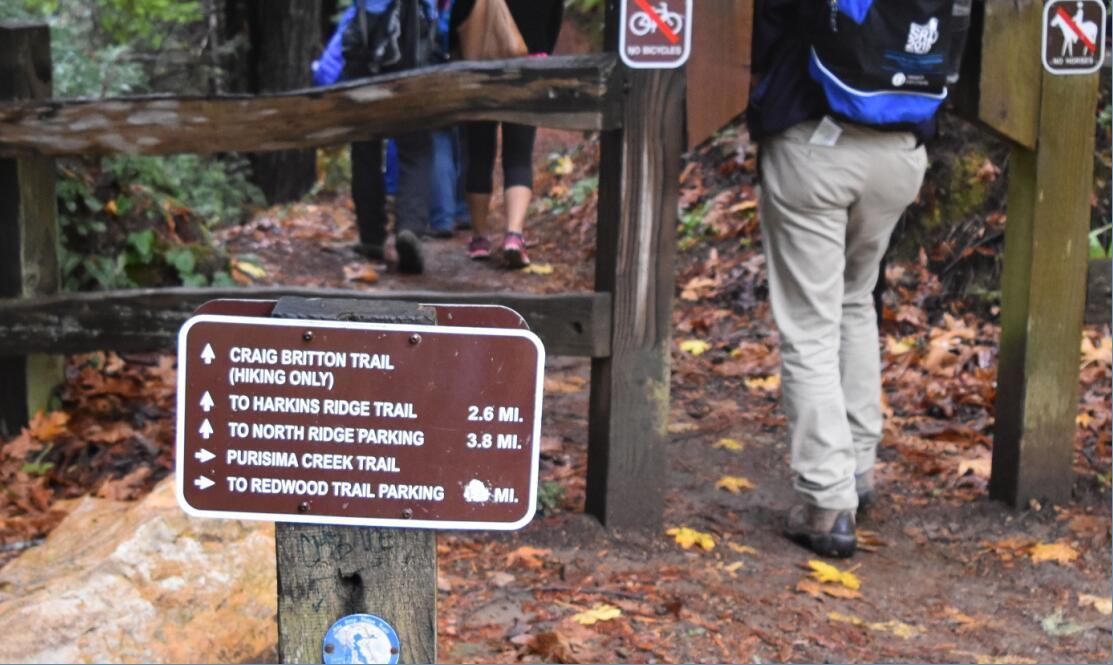 purisima-creek-trail21_0