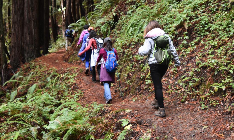purisima-creek-trail24
