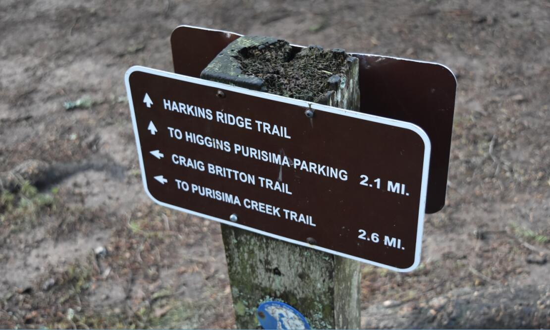 purisima-creek-trail38_0