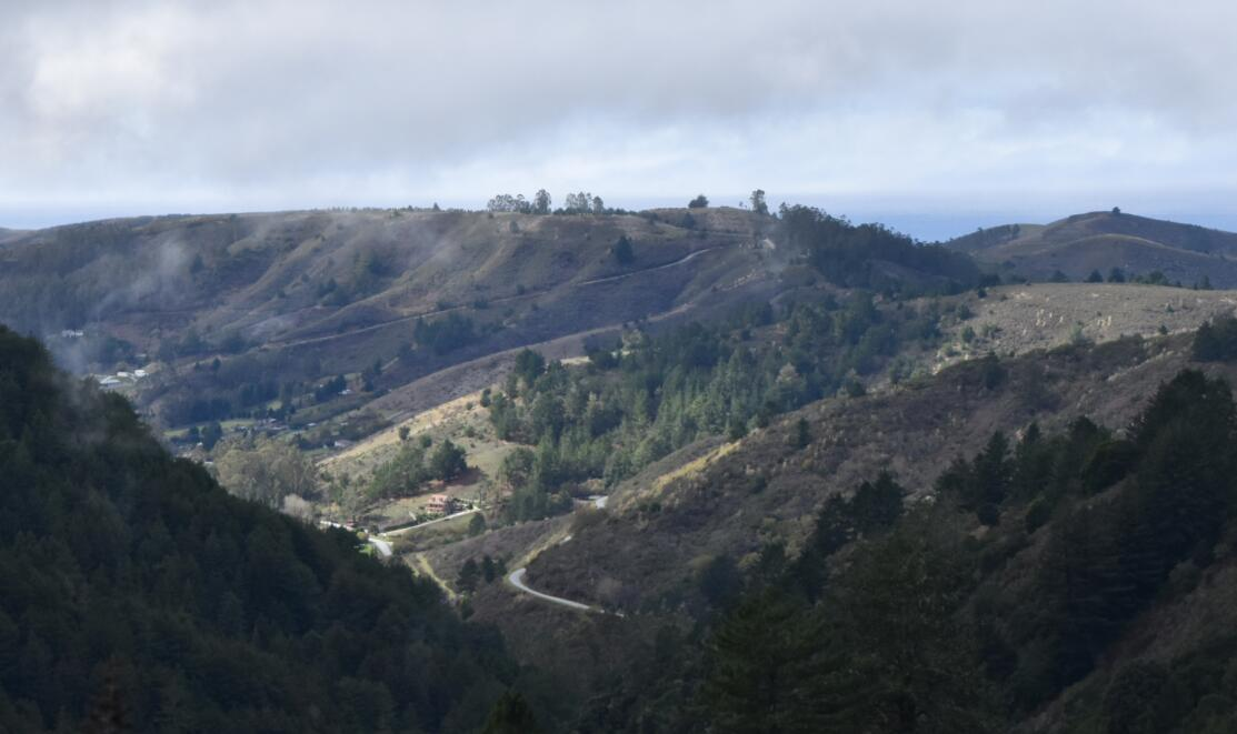 purisima-creek-trail39