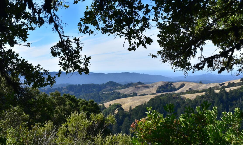 skyline-ridge-open-space-preserve20