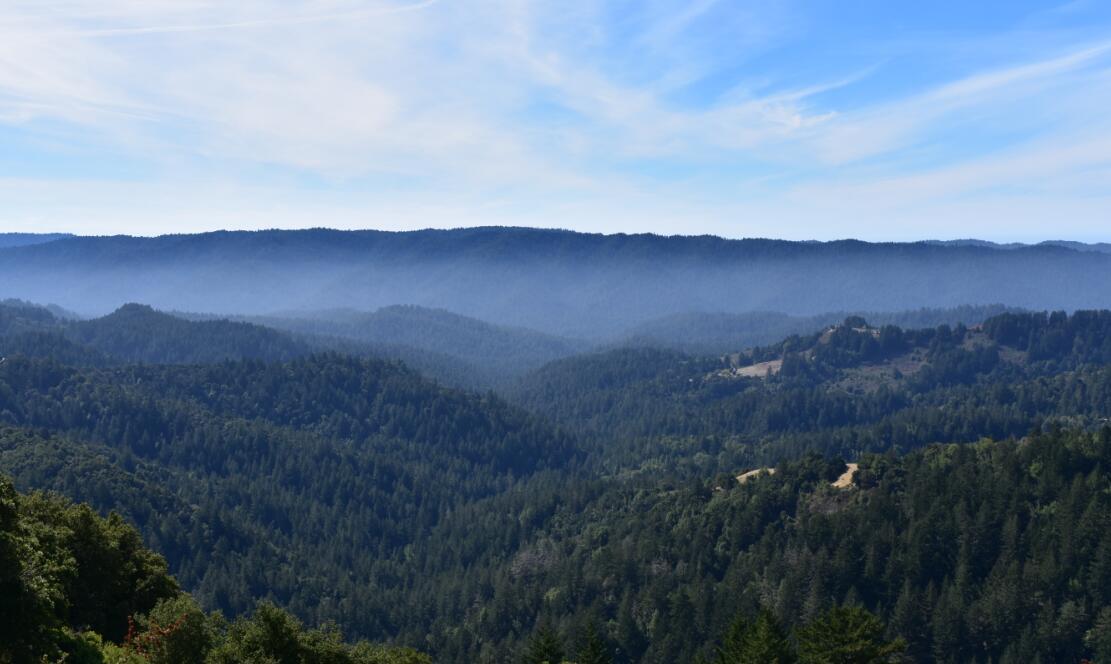 skyline-ridge-open-space-preserve21