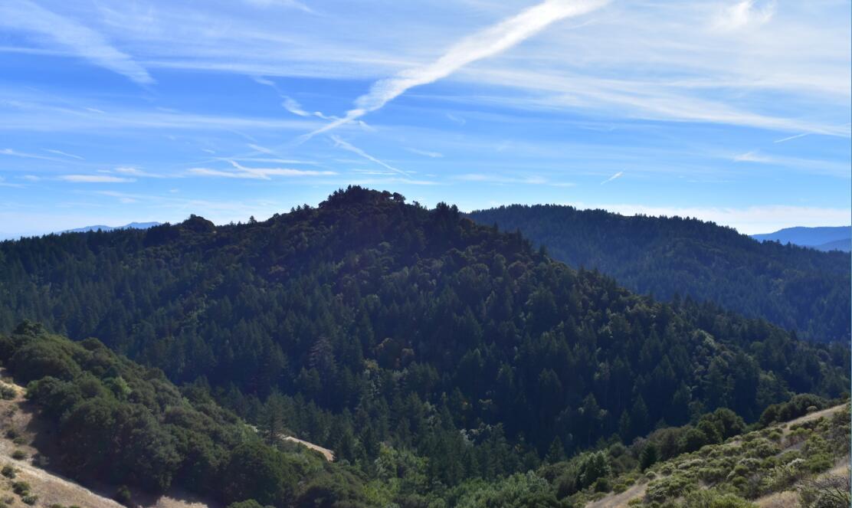 skyline-ridge-open-space-preserve22