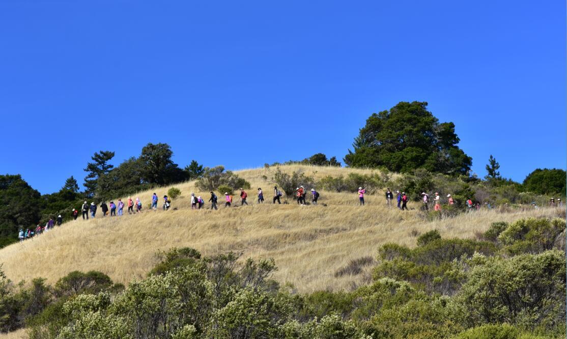 skyline-ridge-open-space-preserve5