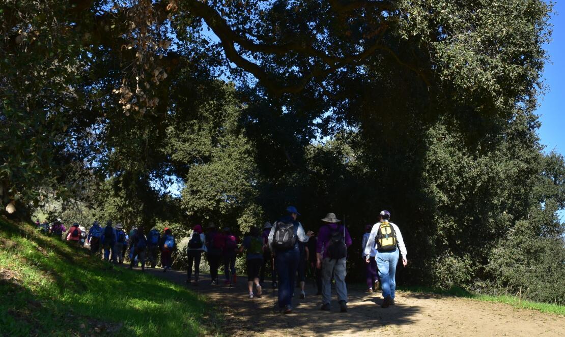 pleasanton-ridge-reginal-park1