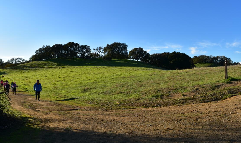 pleasanton-ridge-reginal-park105