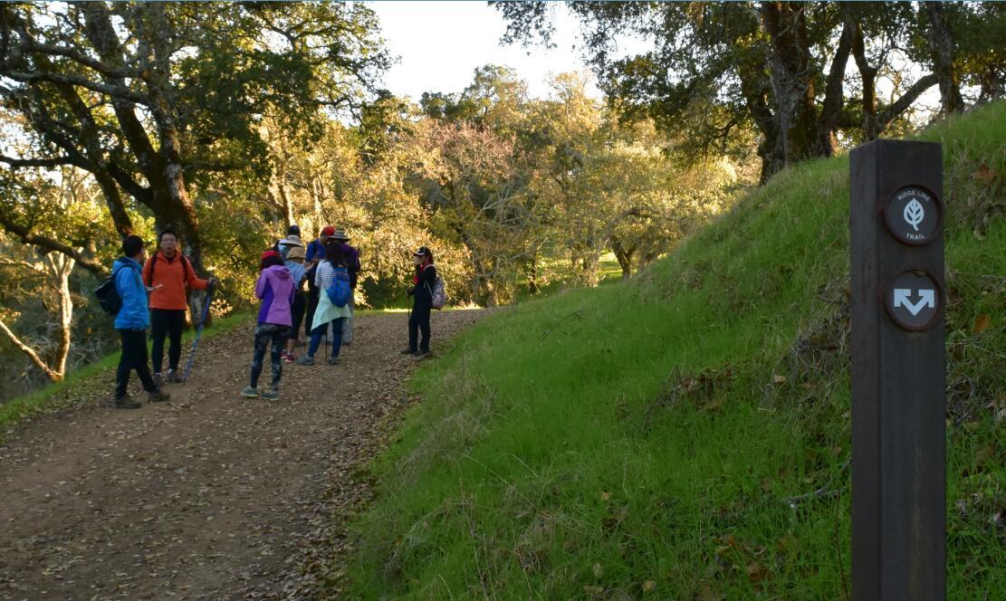 pleasanton-ridge-reginal-park108