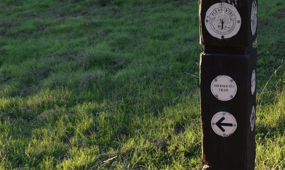 pleasanton-ridge-reginal-park112