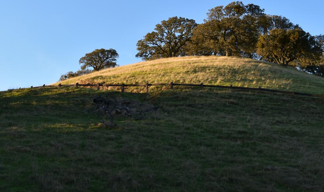 pleasanton-ridge-reginal-park113