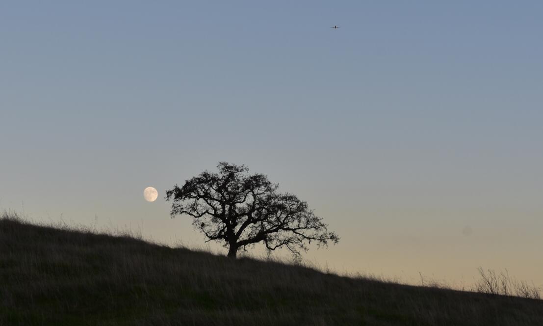 pleasanton-ridge-reginal-park120