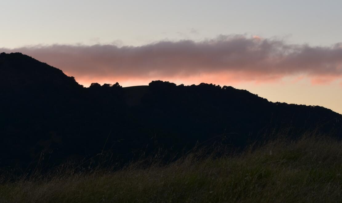 pleasanton-ridge-reginal-park125