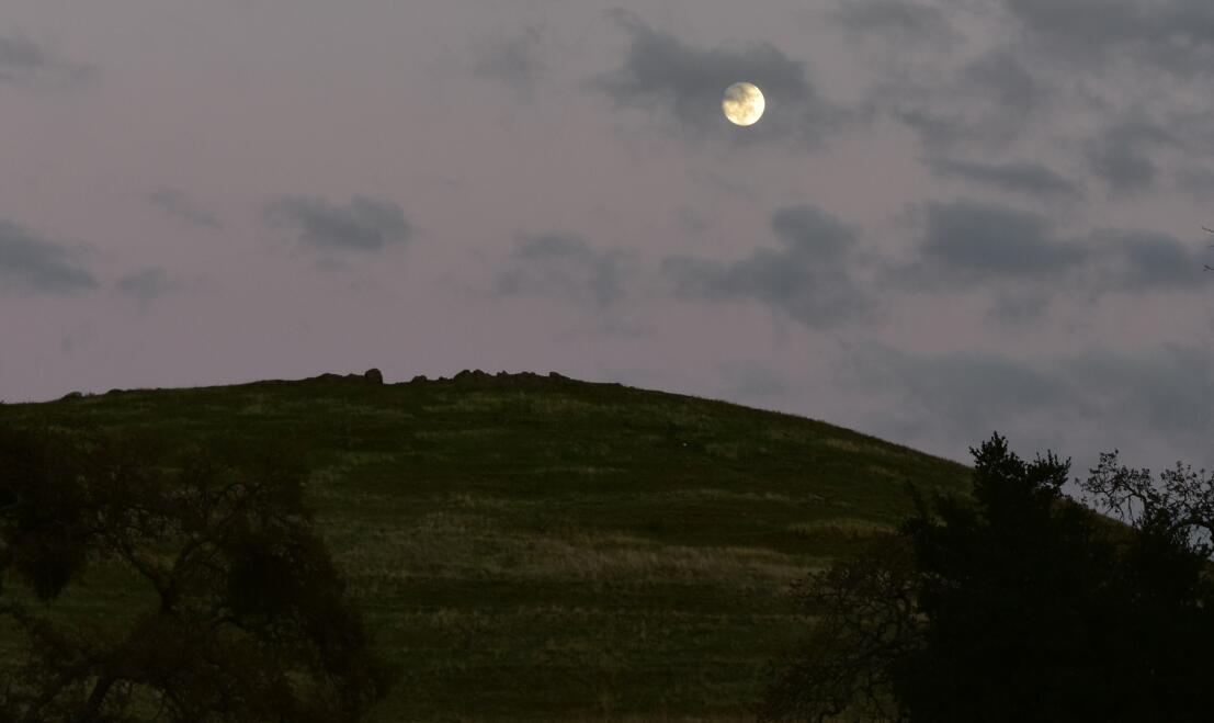 pleasanton-ridge-reginal-park135