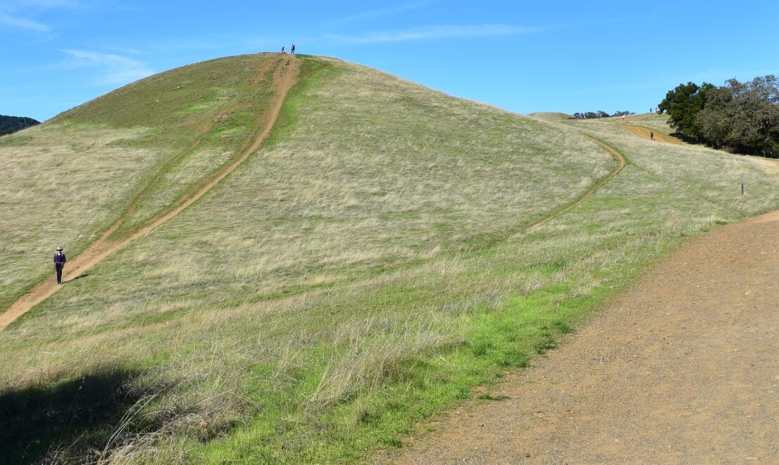 pleasanton-ridge-reginal-park21_0