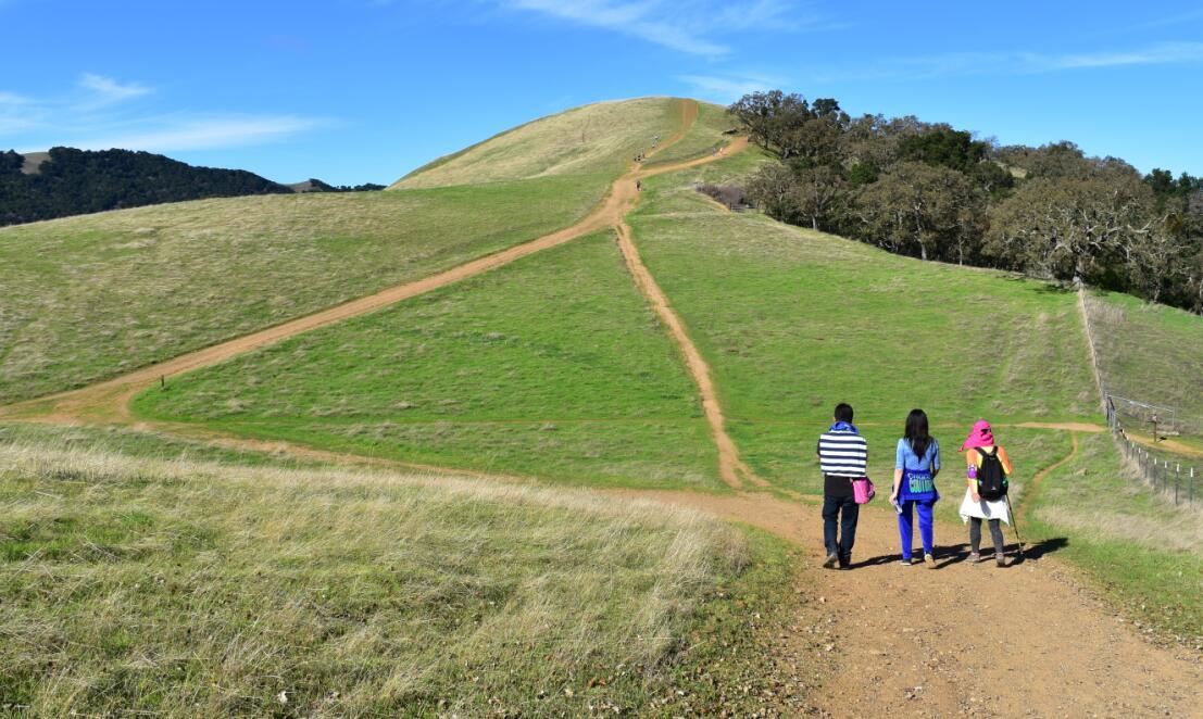 pleasanton-ridge-reginal-park30