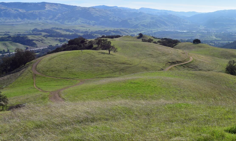 pleasanton-ridge-reginal-park36