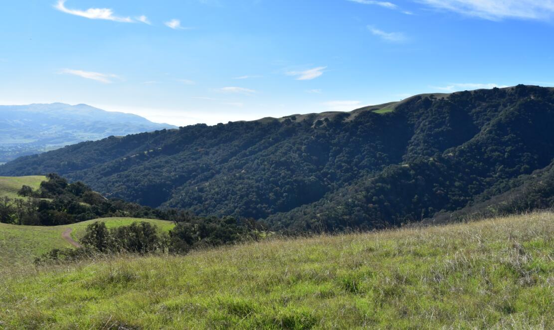 pleasanton-ridge-reginal-park37