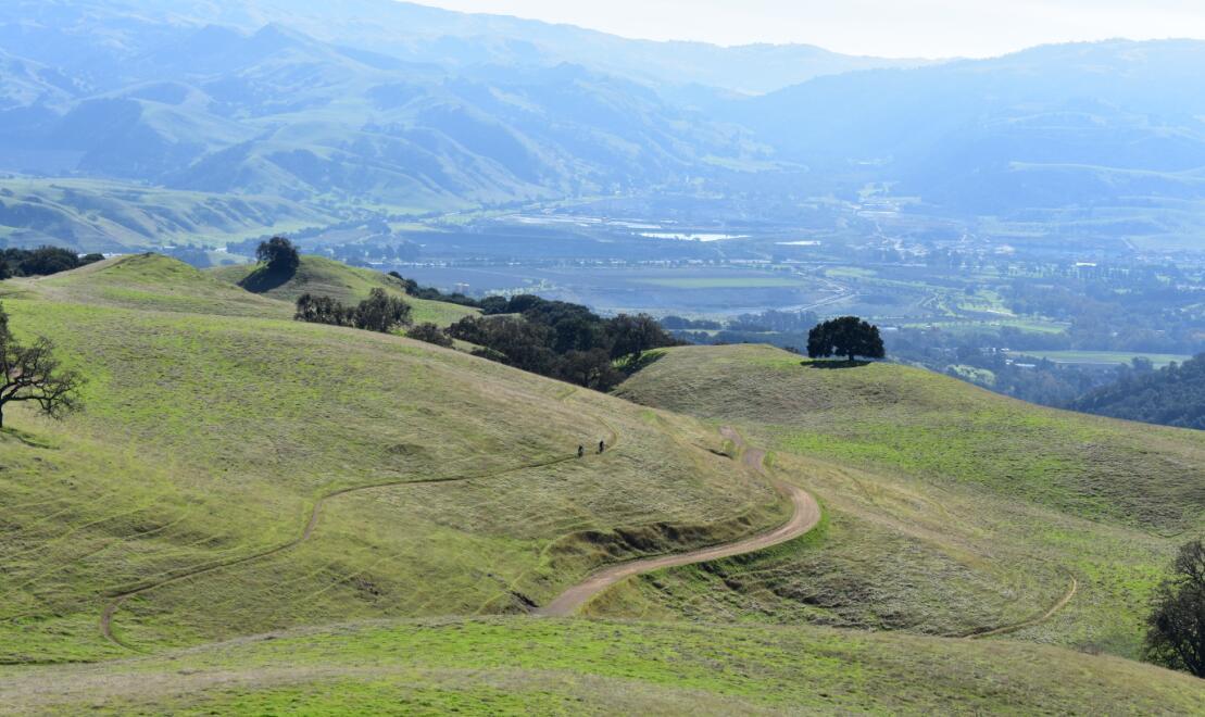 pleasanton-ridge-reginal-park39