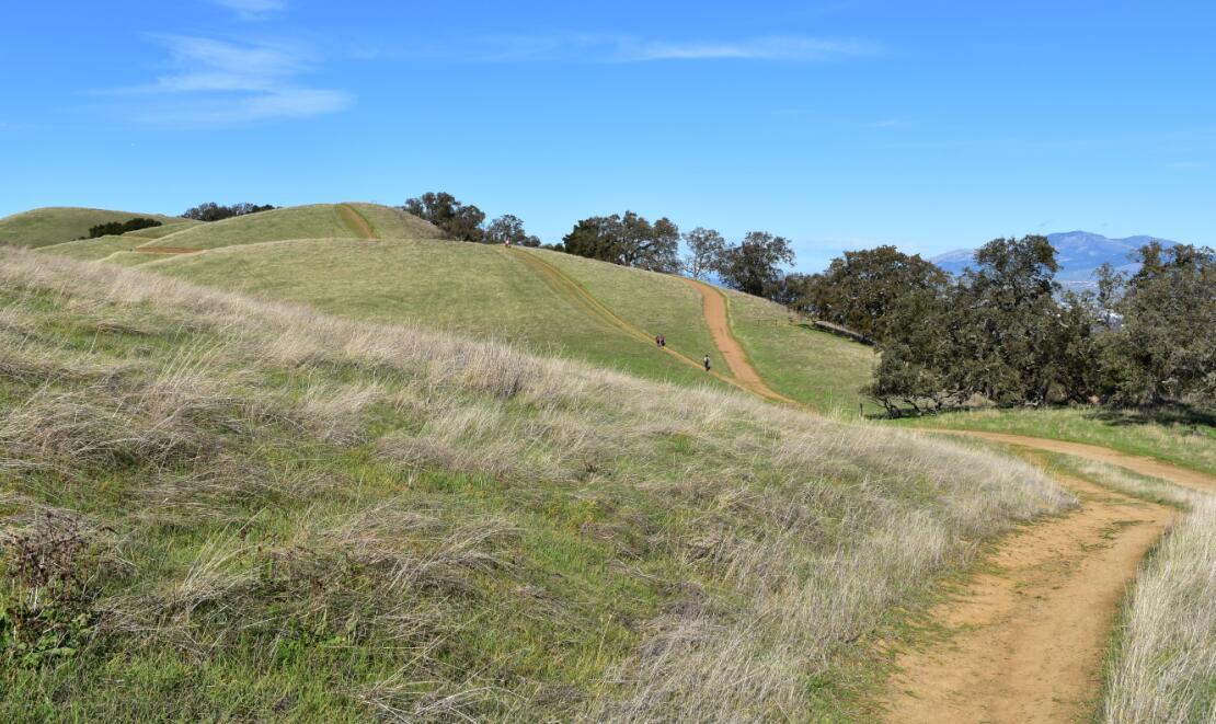 pleasanton-ridge-reginal-park41