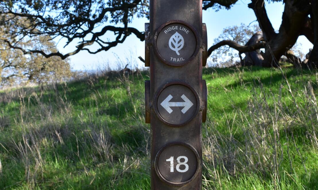 pleasanton-ridge-reginal-park43