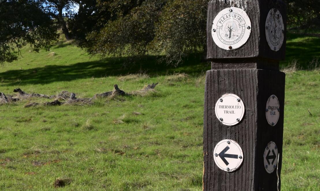 pleasanton-ridge-reginal-park60