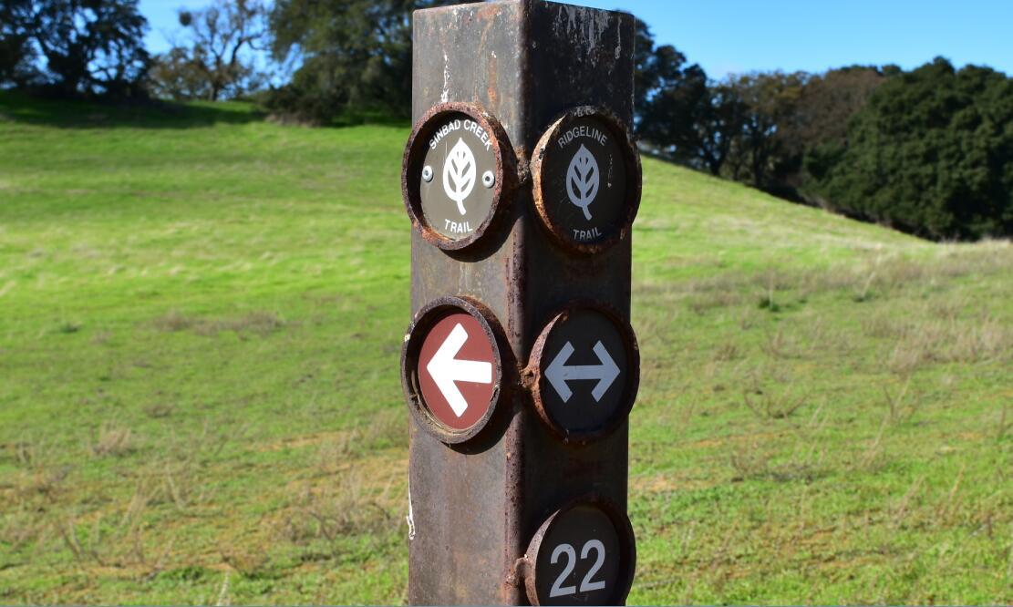 pleasanton-ridge-reginal-park69