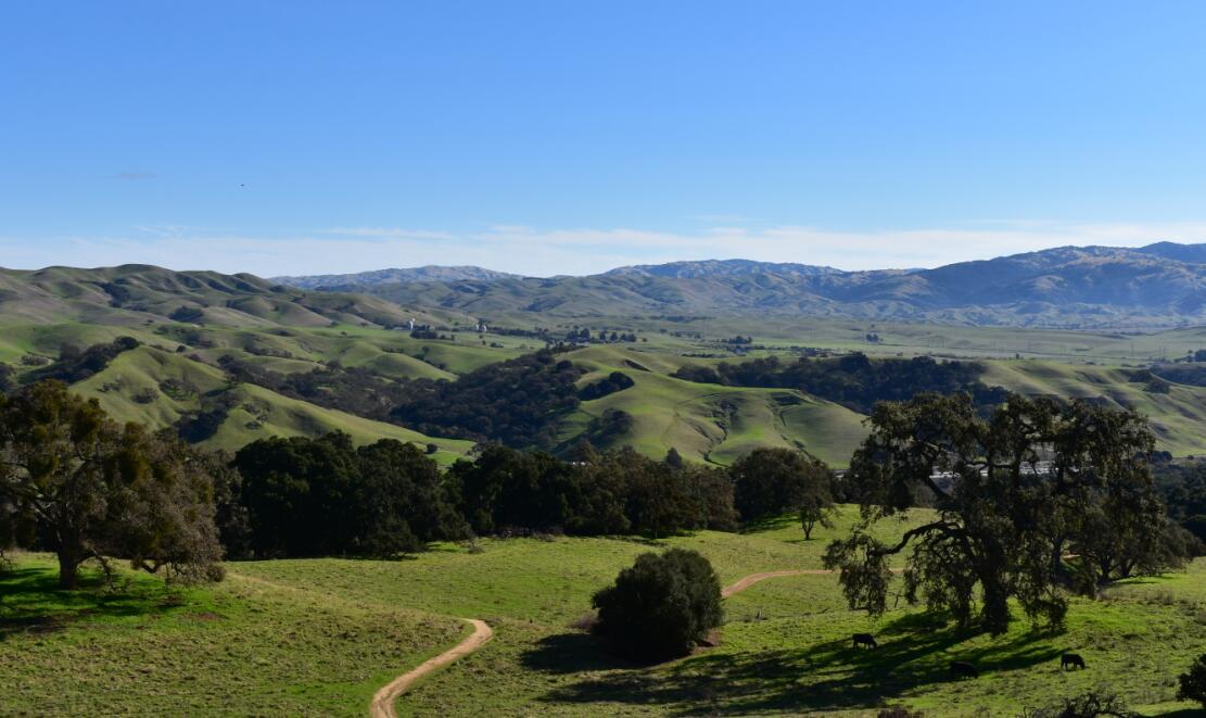 pleasanton-ridge-reginal-park7