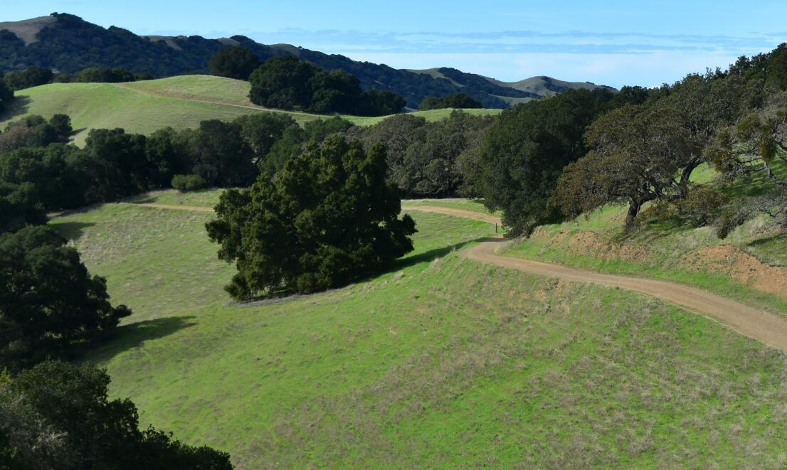 pleasanton-ridge-reginal-park75